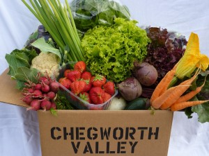 Chegworth veg box